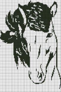 cavallo monocolore