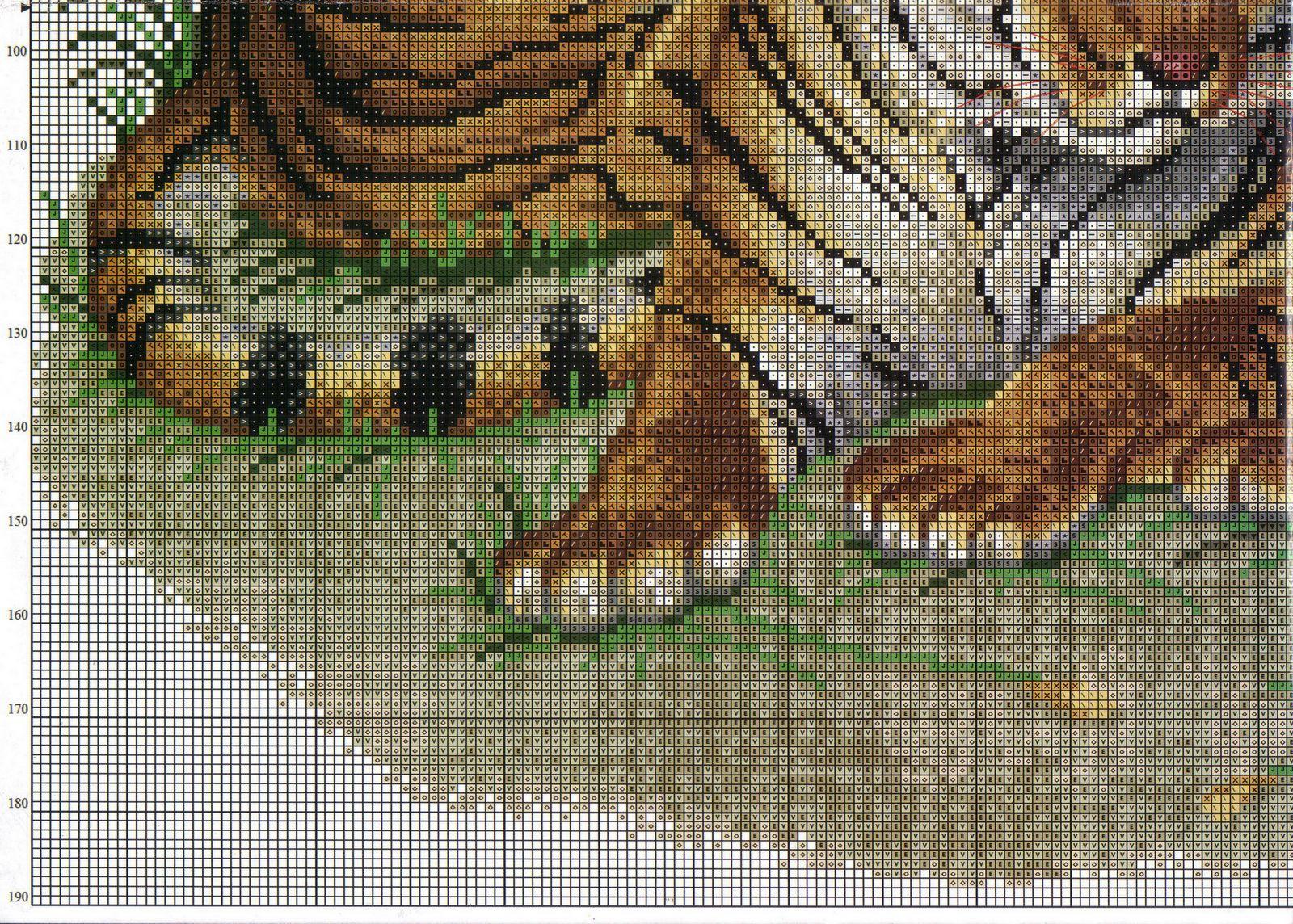 Quadro Tigri Bertafilava